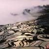 Захватывающая терраса Yuanyang.