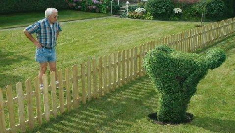 Конфликт с соседями