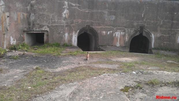 Вход в подземные помещения. Береговая батарея. о. Русский